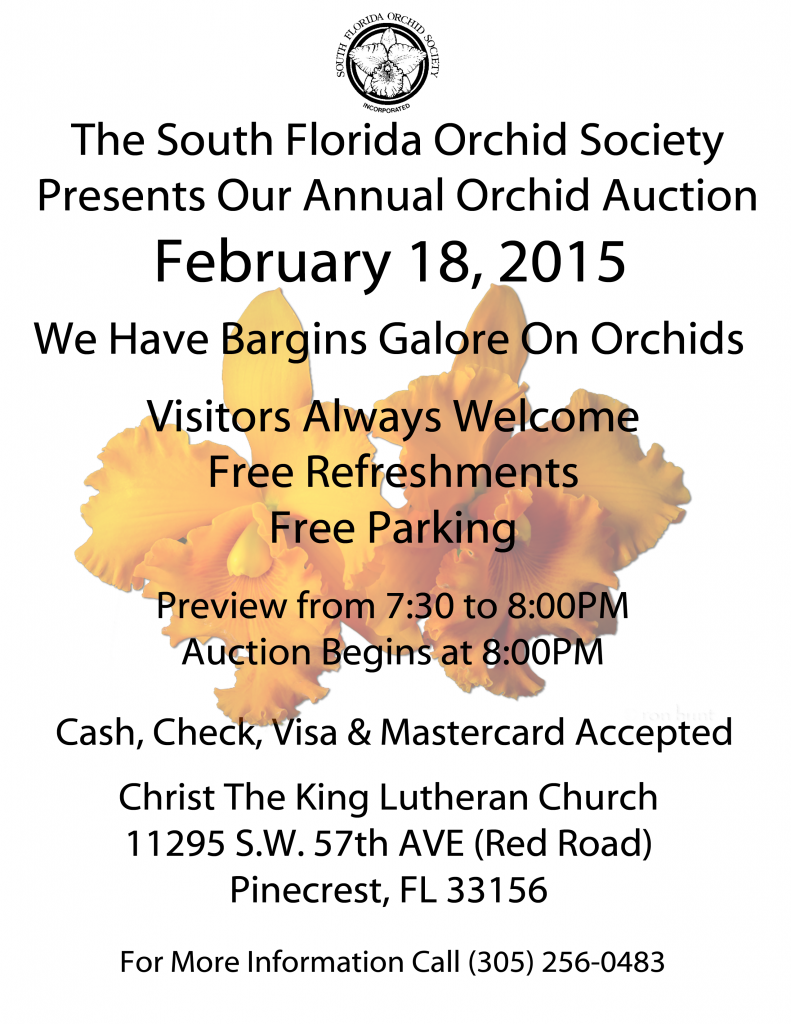 2015 SFOS Auction Flyer
